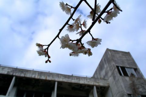 朝鮮学校169_convert_20140528213136