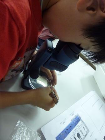 双眼顕微鏡