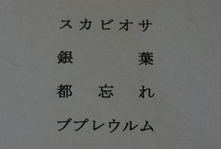 花奏 花名称 01