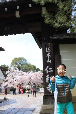 2014春京都 434