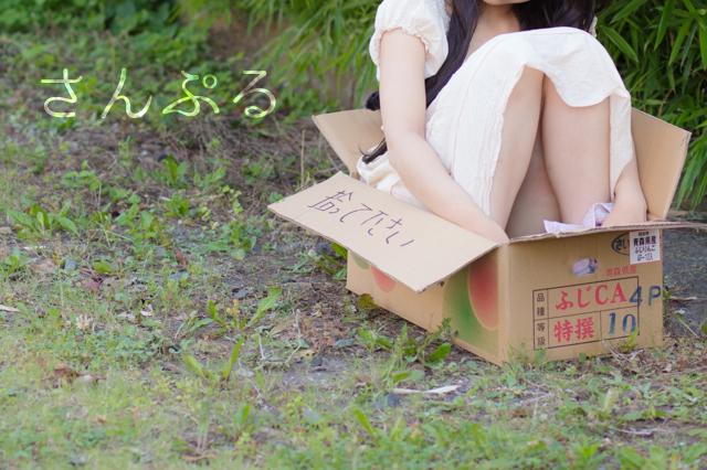 neko_sample_1.jpg