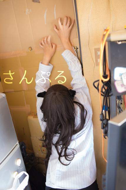 neko_sample_7.jpg