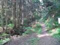 20140429_角田山02