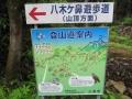 20140517_袴腰山41