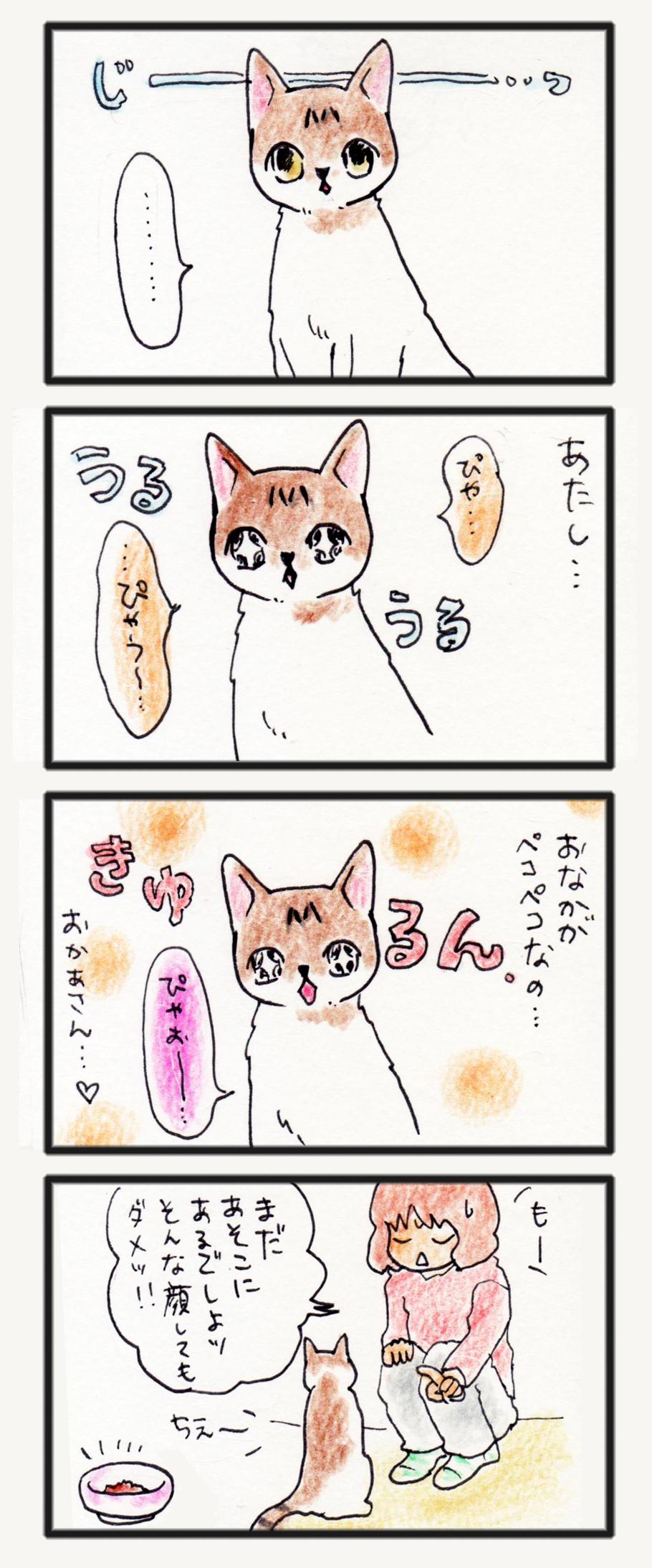 comic_4c_14051501.jpg