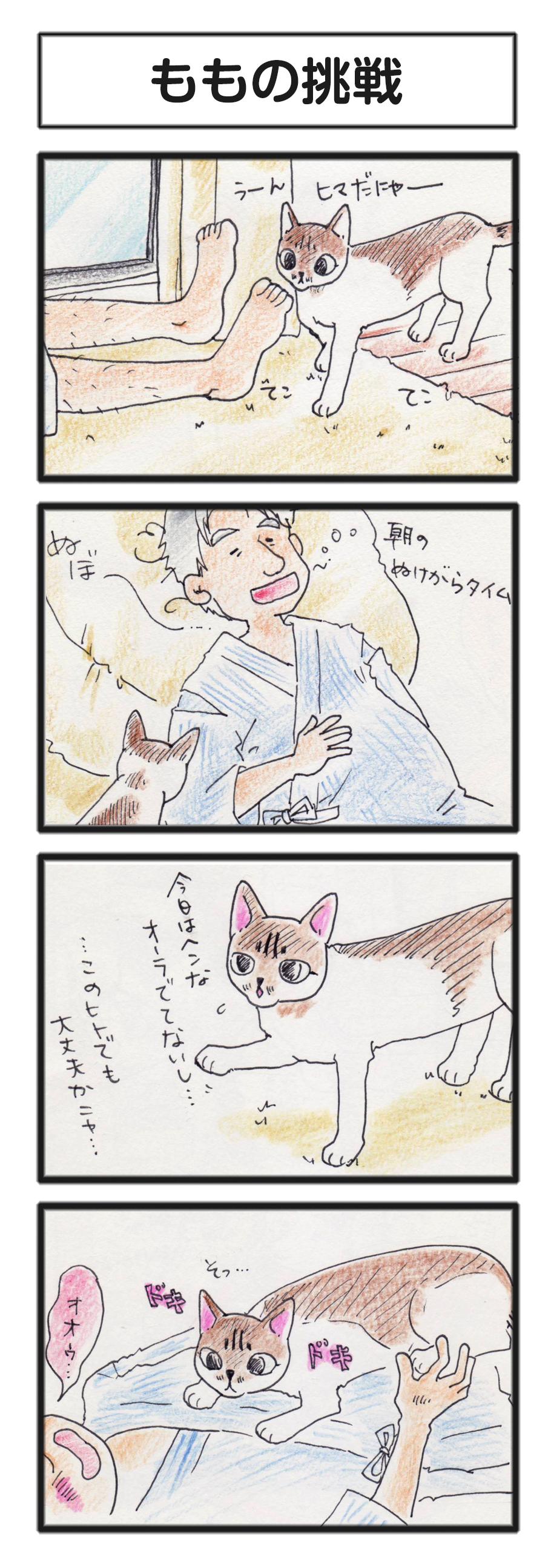 comic_4c_14070702.jpg