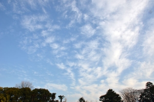 The Sky, March 16, 2013