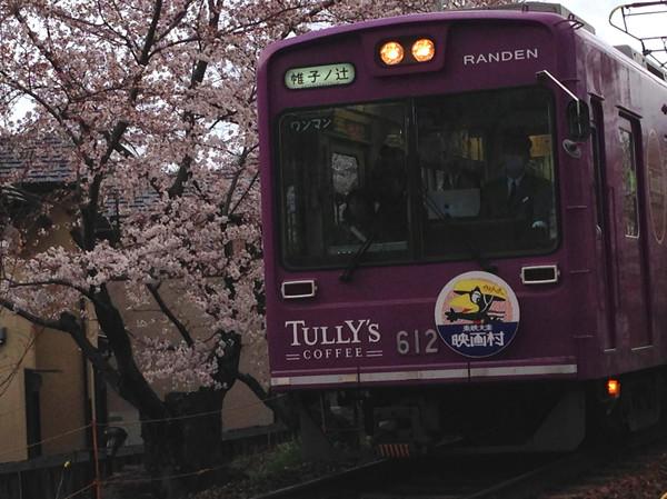 線路の桜2