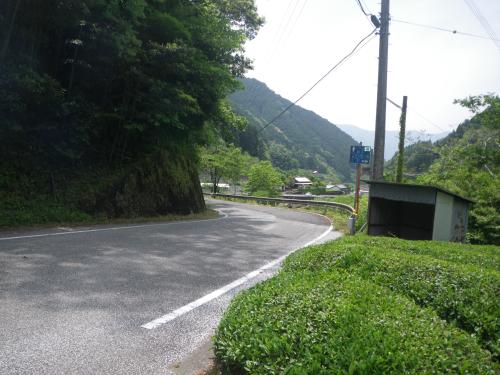 IMGP8376.jpg
