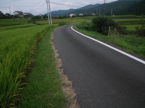 IMGP8956.jpg