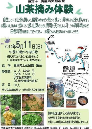 山茶摘み20140511