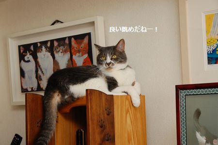 20140604miikun3.jpg