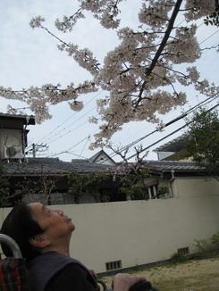 佐藤医院_09