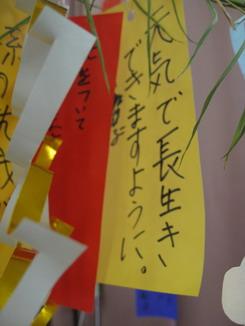 佐藤医院20140709_09