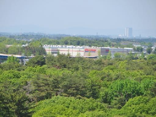 5月10日(土)ひたちなか海浜公園5