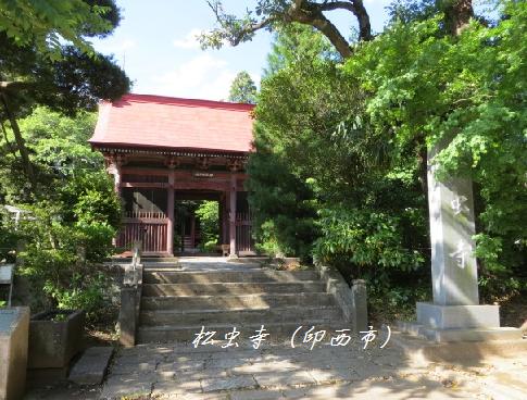 5月17日(土)松虫寺
