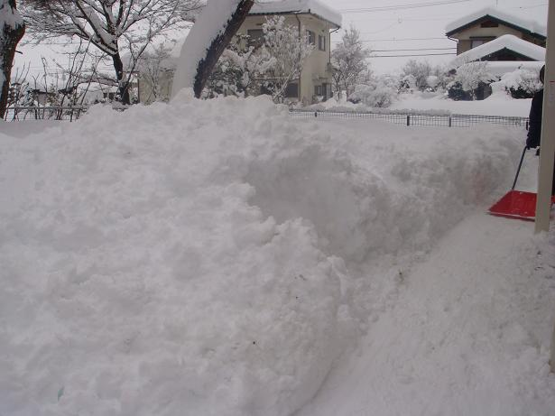 snow_140215