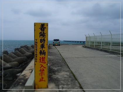 201406miyako7.jpg