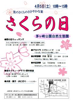 さくら_convert_20140411180800
