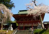 桜2014塩釜神社5随身門