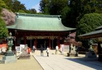 桜2014塩釜神社8志波彦神社拝殿