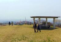 桜2014加護坊山4加護坊山頂上