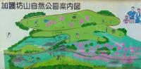 桜2014加護坊山9案内図