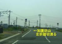 桜2014加護坊山11県道173号