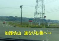 桜2014加護坊山12県道173号