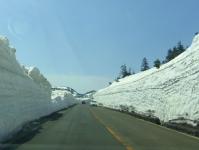 蔵王エコーライン10GW2014雪の壁