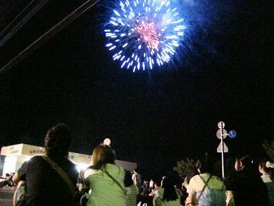 観客と花火