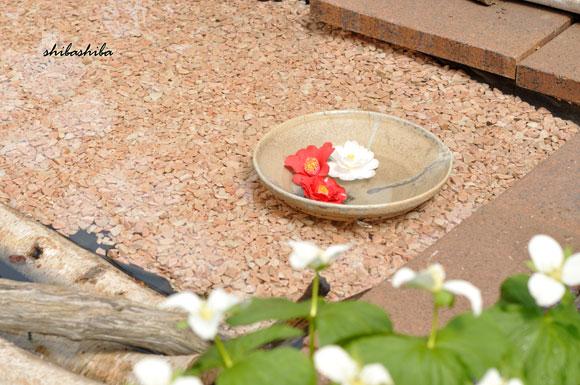 春の花と水盤展
