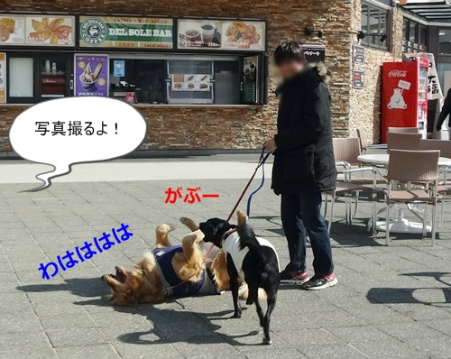 DSC04085.jpg