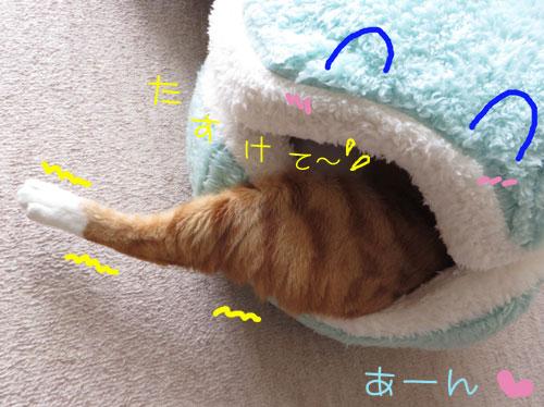 へるぷみぃ~っ;;