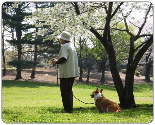 2010_0410_ばぁちゃとぽち