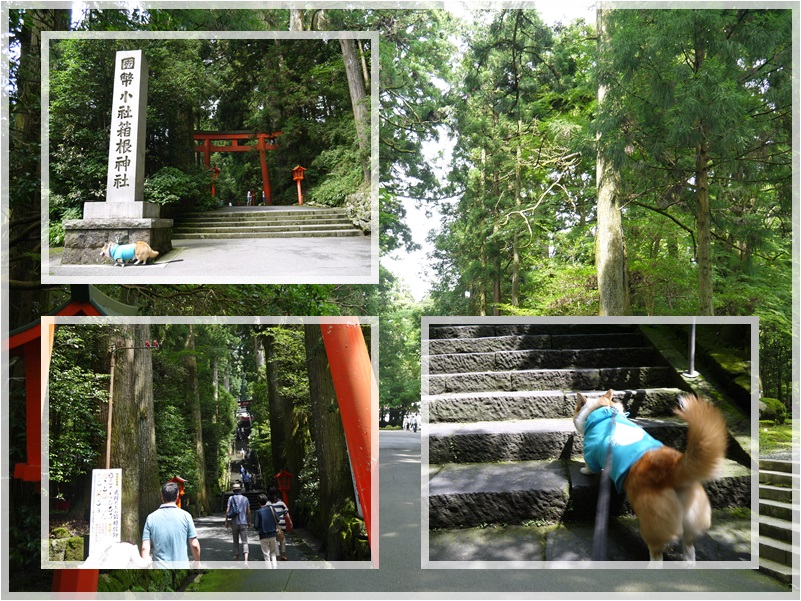 箱根神社①