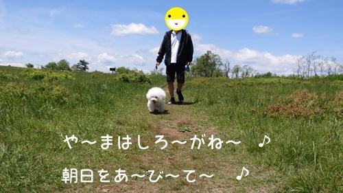 IMG_1420-001.jpg