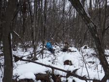 りんくる冬 森の中