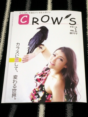 CROWS_01