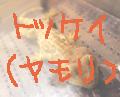 トッケイ_s