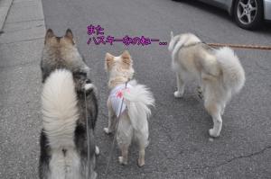 04.13散歩