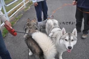 04.13散歩2