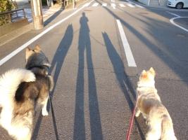 05.18散歩