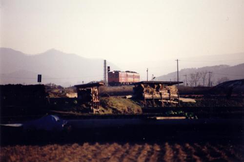 911124-kari1x.jpg