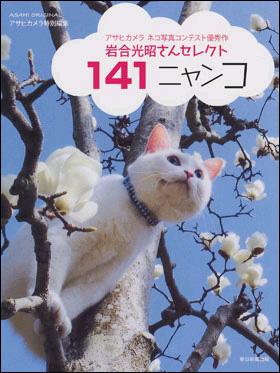 141ニャンコ