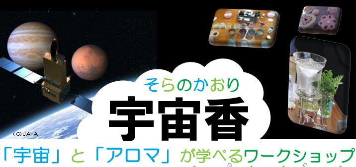 夏休みキッズチャレンジ予告 2014