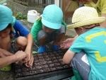 農業教室④
