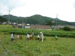 農業教室⑫