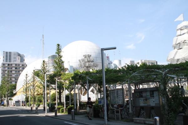 kemono2.jpg