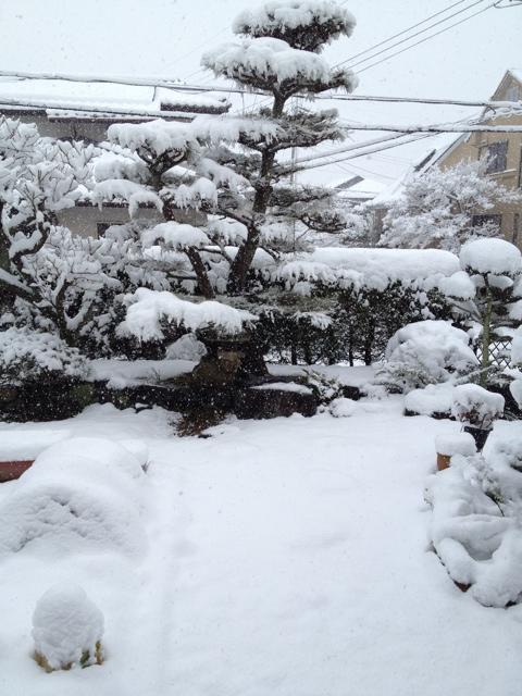 写真 2014-02-14 9 48 06
